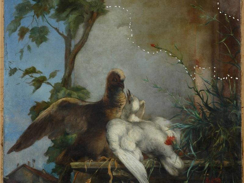Coppia di colombi: seconda fase di restauro